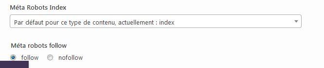 Comment obtenir plus de trafic sur votre site WordPress : Indexer ses articles sur Google