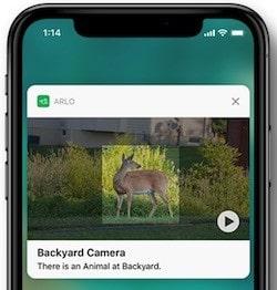Caméra Arlo Pro détection des animaux