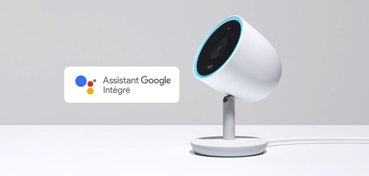 Nest caméra IQ google assistant