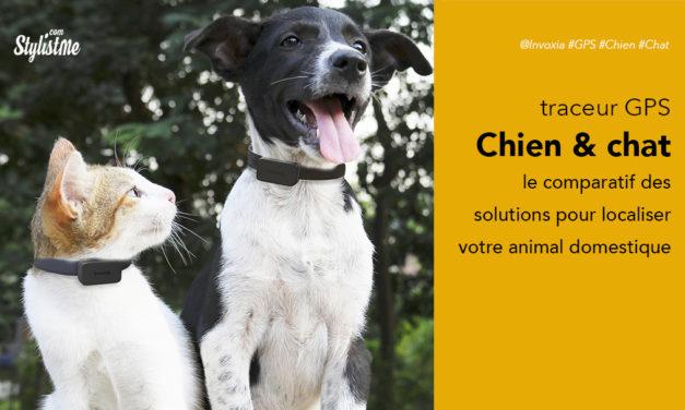Meilleur traceur GPS chien chat : comparatif 2020 et guide d'achat