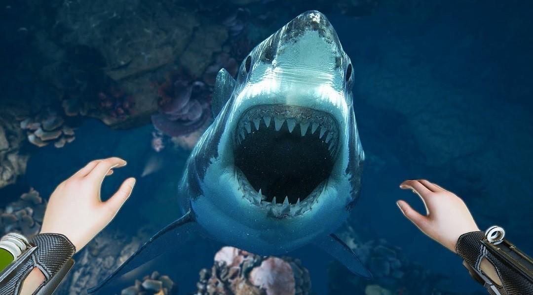 Freediver rencontre requin Oculus Rift