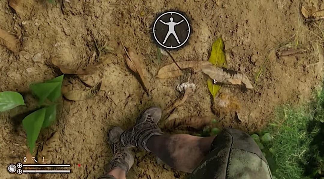 Green Hell VR date de sortie