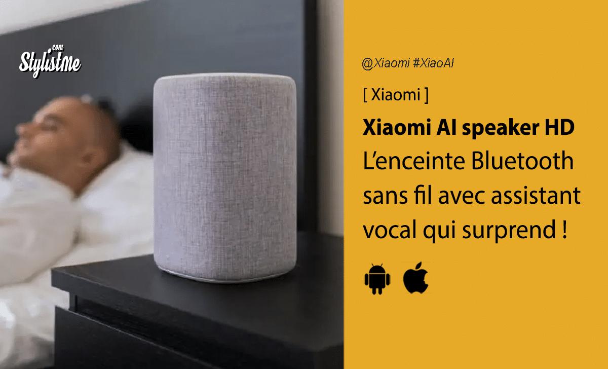 Xiaomi Mi Smart Speaker HD XiaoAI